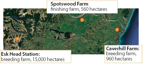 Spotswood Farm, Finishing 560 hectares, esk head: 15,000 hectares, caverhill farm: 960 hectares